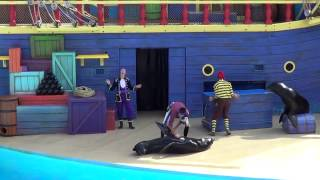 Clyde and Seamore Take Pirate Island Seaworld Orlando full show in HD