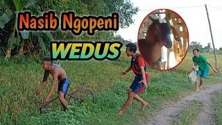 Ceritone wong ndeso Eps.2 - nasib ngopeni wedos || extrim || DAGELAN JOWO