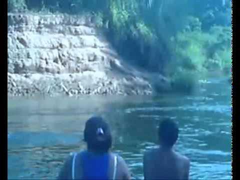 Cobra mata meninas afogadas em ItajubáMG
