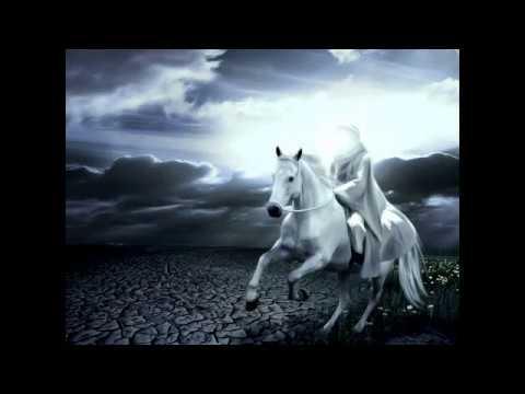 """Şeyxin """"Üzdəniraq"""" olmasının videosu yayıldı-Video Şeyxi sirkələdi."""