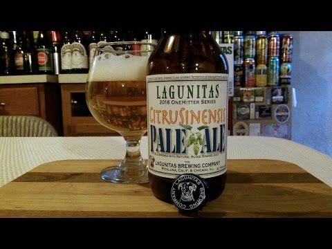 Lagunitas CitruSinensis Pale Ale 2016 (7.9% ABV) DJs BrewTube Beer Review #931