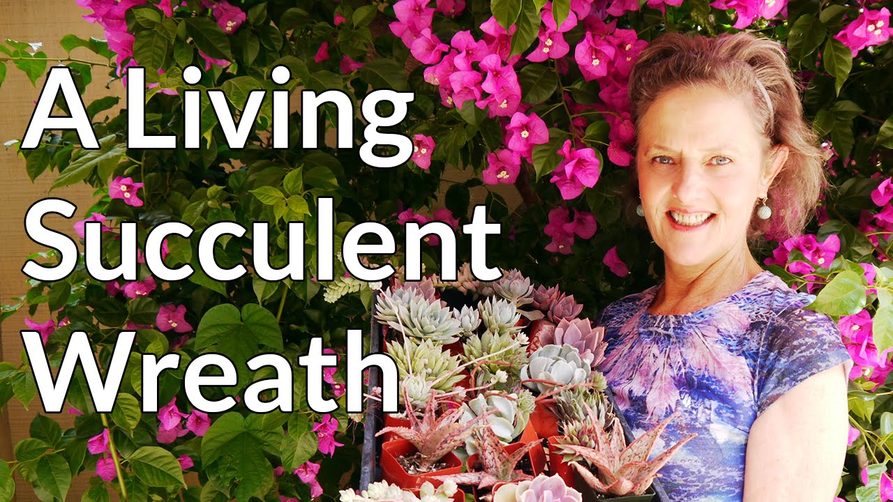 Easy Steps To Making A Living Succulent Wreath Youtube