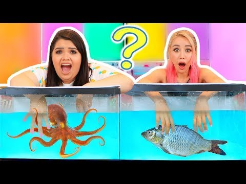 WHATS IN THE BOX CHALLENGE - UNDERWATER EDITION ft. Wengie