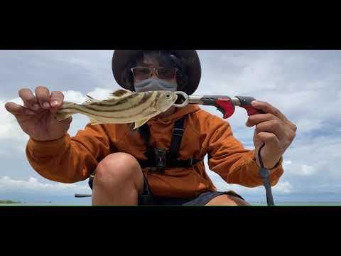 Fishing Fishing Sa Pier | Jagero 2 Monstero Medium Rod | Merida, Leyte