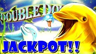 ★ UNEXPECTED JACKPOT on DOUBLE DOLPHINS ★ $9-45 BETS ★ HIGH LIMIT ★ SCATTER MAGIC ★ HANDPAY ★