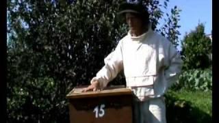 Пчеловодство (уникальный метод - 3-5 фляг меда с улья)(Уникальный метод содержания пчел. 3 фляги меда с улья. Патент на улей., 2010-12-16T13:35:57.000Z)
