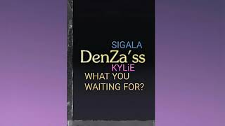 """SiGALA ft. KYLiE - What Are You Waiting For (DenZa'ss Original 12"""" Mix) DL - Below.."""