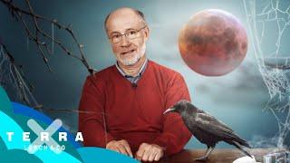 Wie entsteht ein Blutmond? | Harald Lesch
