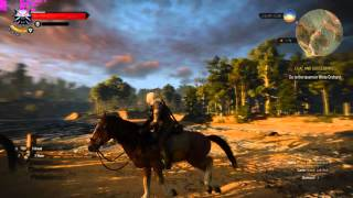 The Witcher 3 on FX-6300 + R9 380 4GB