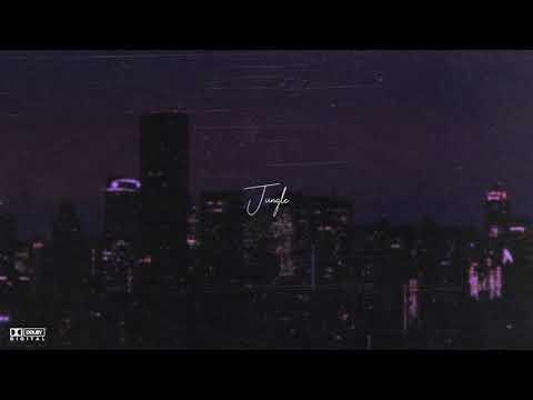 "(FREE) PARTYNEXTDOOR x Bryson Tiller Type Beat – ""Jungle"" | Soulful R&B Type Instrumental 2020"