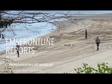 MALIBU SURFERS ARRESTED DURING CORONAVIRUS PANDEMIC 2020