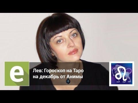 Лев — Гороскоп на Таро на декабрь 2018 года от эксперта LiveExpert.ru Анима