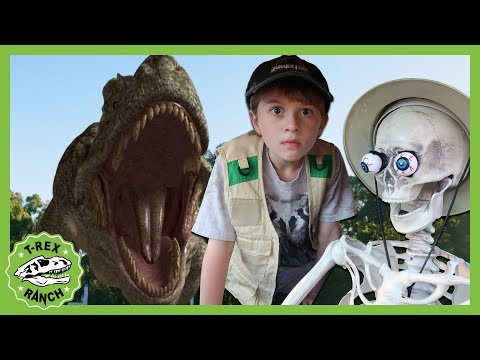 Giant T-Rex Dinosaur Takes on The Skeleton! Halloween Ready! Dinosaurs For Kids - T-Rex Ranch from YouTube · Duration:  56 minutes 17 seconds