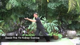 Daoist Five Yin Qigong Set