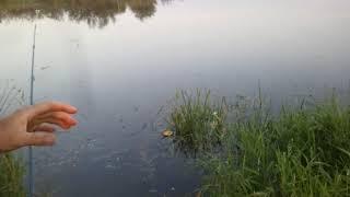 Рыбалка, деревня, водка  водка спасает рыбу Повертаємся з рибалки ЯВА 350