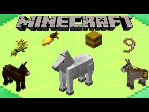 how-to-tame-&-breed-horses-in-minecraft