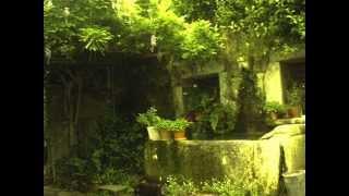 Mendelssohn - Lieder Ohne Worte Op.85 No.1