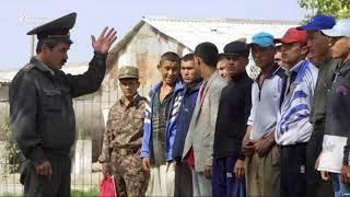 Ўзбекистон армиясининг 10 минг аскари пахта термоқда