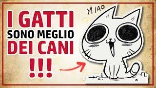 13 motivi per cui I GATTI SONO MEGLIO DEI CANI! - RichardHTT