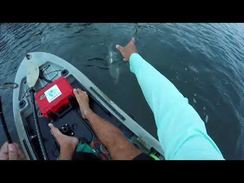 Vero Beach Kayak Fishing Charters How To Catch Tarpon Pt 1