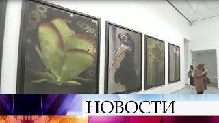 видео крыша мультимедиа арт музея
