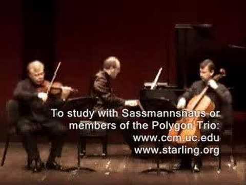 Polygon Trio Plays Dvorak Dumky mvt 3