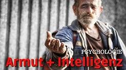 Psychologie: Armut und Intelligenz (Kann Armut unsere Intelligenz beeinträchtigen?)