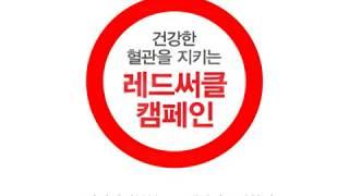 대한당뇨병학회_질본_레드서클캠페인_2010