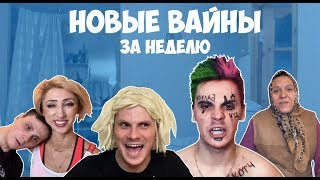 Download НОВЫЕ ВАЙНЫ ЗА НЕДЕЛЮ (#gan_13_) Mp3 and Videos