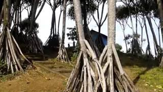 PANTAI KARANG TAWULAN, KAB. TASIKMALAYA