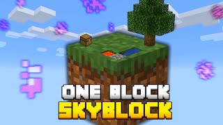 Minecraft Skyblock, But You Only Get ONE BLOCK