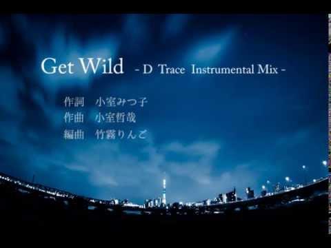 Get Wild  -D Trace Instrumental Mix -  (TM NETWORKカバー)
