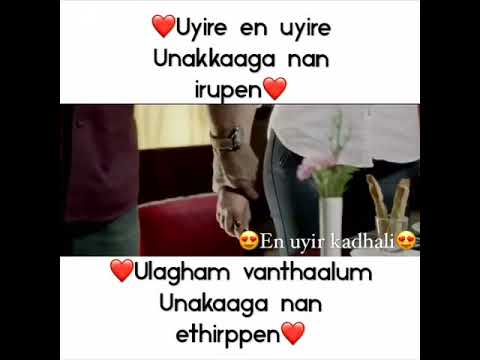 Visal love - uyire en uyire - poojai - shruthi haasan love (what's up status)