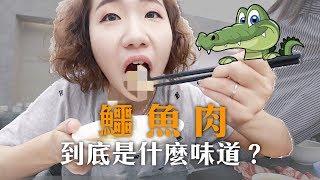 【美食獵人】鱷魚肉到底是什麼味道?高級火鍋搭配禁忌食材 ft.9floor玖樓鍋物|Evanna凡娜