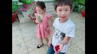 Về Quê Hái Xoài cùng Gia Đình Lý Hải Minh Hà