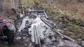 Мужик в лесу объелся грибов, чё то произошло