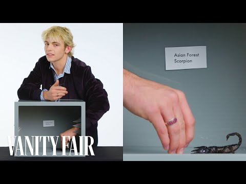 Ross Lynch Touches a Scorpion, Hissing Cockroach & Other Weird Stuff  Vanity Fair