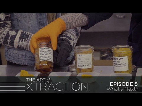 The Future of the Cannabis Extract Industry: The Art of Extraction with Roxy Striar