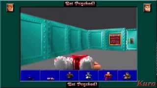 50th Video Special: Wolfenstein 3D - All Boss Fights! (PS3)