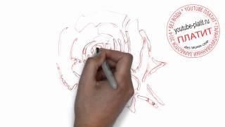 Как нарисовать розу для начинающих(Как нарисовать розу поэтапно простым карандашом за короткий промежуток времени. Видео рассказывает о том,..., 2014-06-27T06:53:25.000Z)
