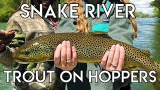 Epic Snake River Hopper Fishing
