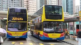 Hong Kong Bus CTB 8467 @ 85A 城巴 Alexander Dennis Enviro500 MMC 筲箕灣 寶馬山
