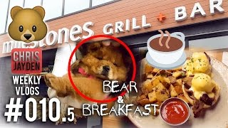 my last vlog ever the cutest dog🐶 youll ever meet🙈 bear🐻 breakfast🍳🍴 weekly vlog 0105