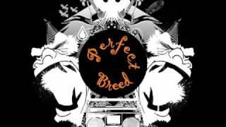 N Gels Feat Estelle Desanges - Sex Machine HQ
