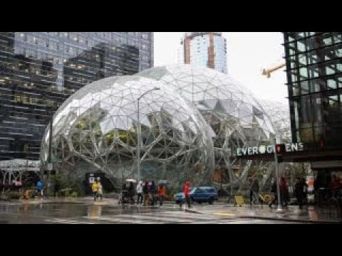 Seattle's new tax an example of the left's dislike of capitalism: Varney