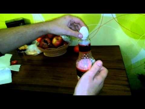 Как избавиться от мышей alladviceru