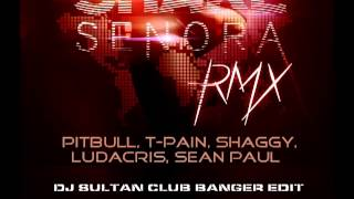 SHAKE SENORA - PITBULL T-PAIN SHAGGY LUDACRIS SEAN PAUL DJ SULTAN CLUB BANGER EDIT