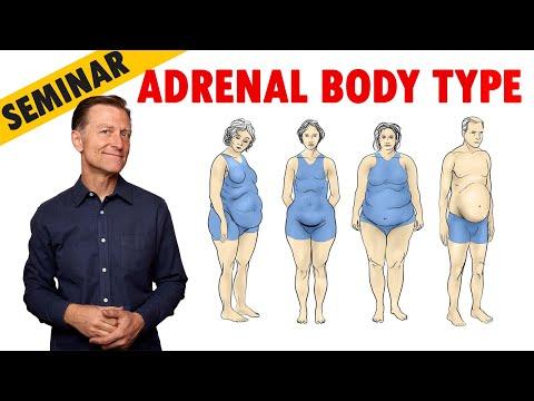Dr. Berg's Adrenal Body Type Seminar