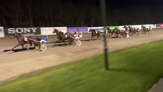 Vidéo de la course PMU PRIX BELGIAN SCRAP RECYCLING