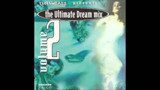 The Ultimate Dream Mix 2
